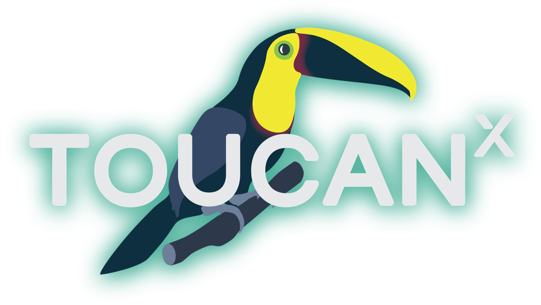 The ToucanX Logo